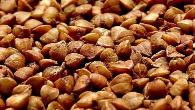 Saracen wheat