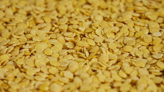 Lenticchie gialle decorticate